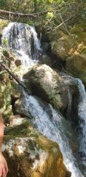 Ciprissetta_fontegrca11.jpg