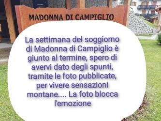 Madonnadicampiglio_5.jpg