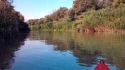 Il fascino discreto del fiume