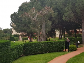 19CRALT_Evento Culturale Riviera Dei fiori_Loano.JPG