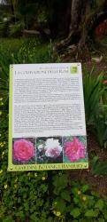 Giardini_Hanbury2.jpg