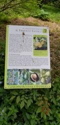 Giardini_Hanbury15.jpg