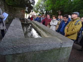 12Monselice, Padova, Asolo, Treviso.jpg