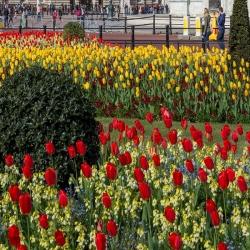 I 300 giardini più belli d'Italia