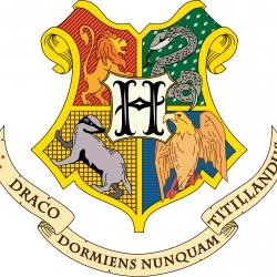Una Giornata Fantastica con Harry Potter