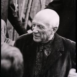 Picasso in mostra a Campobasso