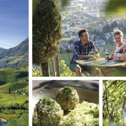 Bolzano Vigneti e Dolomiti: un ricchissimo ventaglio di proposte turistiche