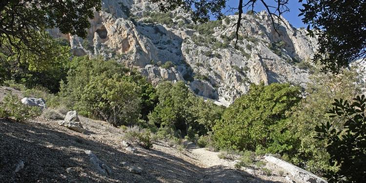 Trekking Canyon Gorroppu