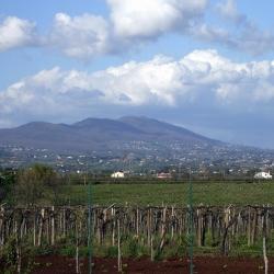Open day ai Castelli Romani