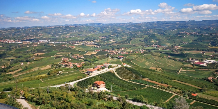Suggestione delle Langhe