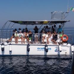 2Escursione alla ricerca dei delfini.JPG