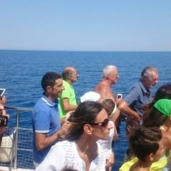 9Escursione alla ricerca dei delfini.JPG
