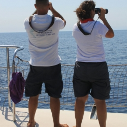 25Escursione alla ricerca dei delfini.jpg