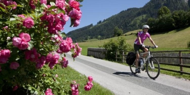 Cicloturistica Alpe Adria