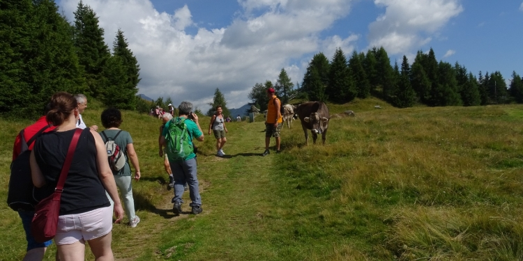 Trekking a Vipiteno/Sterzing
