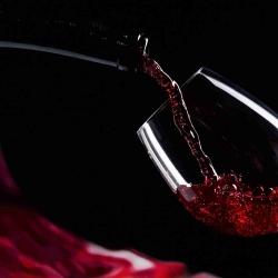 Corso di degustazione di vini
