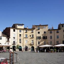 Tour della Provenza e Camargue10.jpg