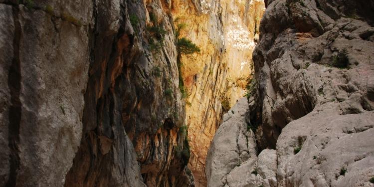 Trekking al Canyon Gorroppu