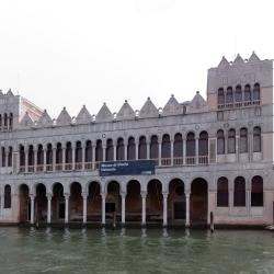 Venezia: al Museo di Storia Naturale