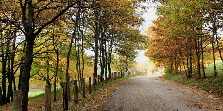 Umbria: trekking al Monte Alago
