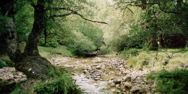 Parco d'Abruzzo, il 98% dei turisti che ci sono stati vuole tornarci