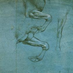 Leonardo a Torino