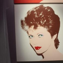Mostra su Andy Warhol3