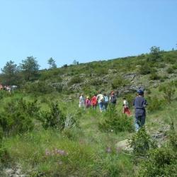 Il Sentiero Natura del Monte Bossea