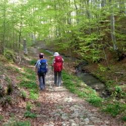 Emilia Romagna: i cammini sono di nuovo percorribili