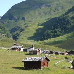 Vacanze: italiani fra malghe, frantoi e cantine