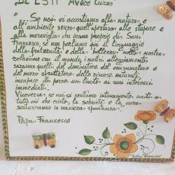 Ciprissetta_fontegrca7.jpg