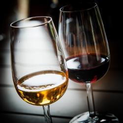 Degustazione e vini, un webinar