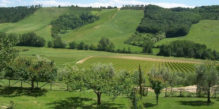 Tour in Umbria e Tuscia